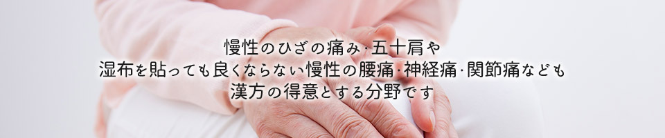 慢性のひざの痛み・五十肩や湿布を貼っても良くならない慢性の腰痛・神経痛・関節痛なども漢方の得意とする分野です